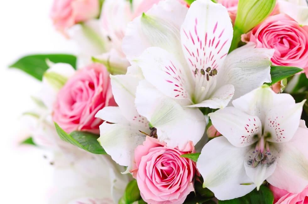 Цветочный магазин - Торгово-развлекательный центр Гагарин